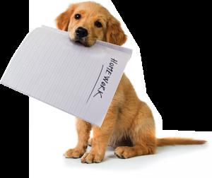 SMHW_puppy_homework